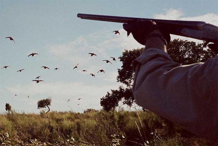 caza-calendario