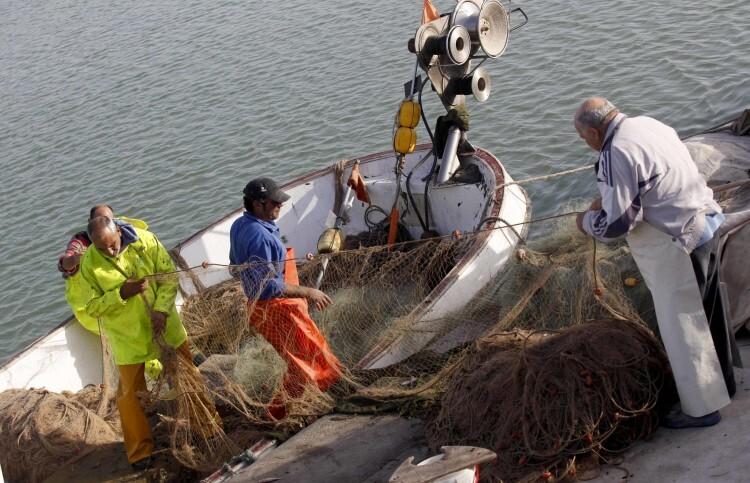 pescaPescadores faenando con el atún rojo. Foto de archivo._atun_rojo