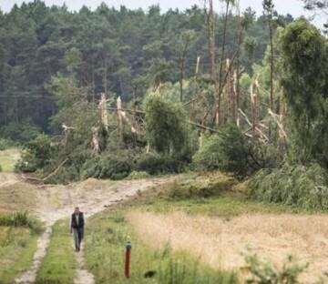 A las tormentas se sumaron fuertes vientos que derrumbaron árboles, postes eléctricos y arrancaron los tejados de casas y estancias.