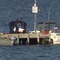 Australiana vio cómo un tiburón atacó y mató a su padre