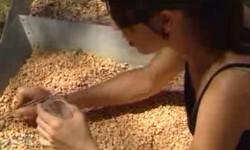 Comienzan-las-excavaciones-en-Cueva-Fantasma-un-nuevo-yacimiento-de-Atapuerca_image648_365