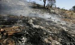 Consecuencias-de-un-incendio-forestal