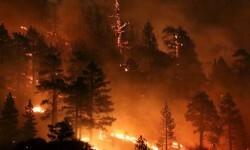 El incendio forestal que mantiene alerta a California (3)