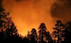 El incendio forestal que mantiene alerta a California (7)