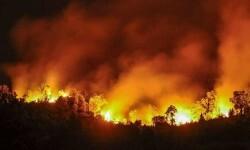 En Soria el fuego comienza a estar controlado.