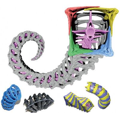 La-cola-cuadrada-de-los-caballitos-de-mar-inspira-aplicaciones-roboticas_image_380