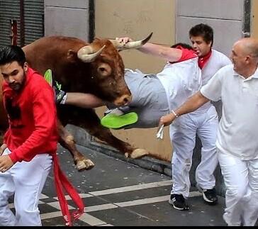 Uno de los mozo es cogido por el toro en el encierro de ayer.