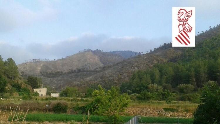 El flanco Este del incendio de Montán, ya sin llama. Foto: GVA 112.