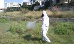 35e47-mosquits-plaga-abr15
