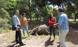 El Gobierno Municipal prevé abrir el Parque del Pinar al público el próximo fin de semana