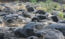 El tiempo seco revela río increíble con miles de Shiva Lingas Dry-Weather-Reveals-Amazing-River-With-Thousands-of-Shiva-Lingas (1)