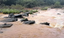 El tiempo seco revela río increíble con miles de Shiva Lingas Dry-Weather-Reveals-Amazing-River-With-Thousands-of-Shiva-Lingas (4)