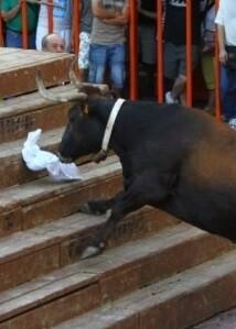Fiesta del bous al carrer.