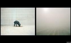 Imágenes de los perros de caza abandonados en España (11)