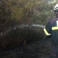 Incendio en El Saler en una imagen de archivo. (Foto-VLCNoticias).