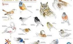 La Comunitat Valenciana asiste en el Reino Unido a la principal feria internacional dedicada al turismo ornitológico, la British Birdwatching Fair