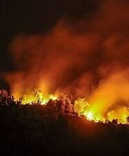 Las fuertes rachas de viento llevaron las llamas hasta las cercanías de Hoyos. (Foto-VLCNoticias).