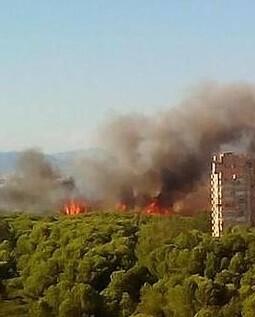 Misma zona donde hace cuatro días ardieron seis hectáreas.