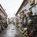 Nichos en el cementerio de Gandia.