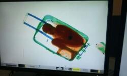 Quería entrar ilegal a España y murió asfixiado en una maleta