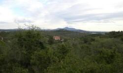 Zona del monte Petiquillo en Benicarló.