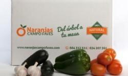 gazpacho_campo_faves_1