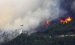 incendio en la Sierra de Gata  (1)