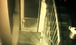 Tamara Samsonova el video de la abuela caníbal llevando la cabeza de una víctima en una olla