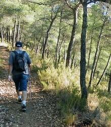 La iniciativa arrancará el próximo 4 de octubre a las 9 de la mañana con un itinerario por la Sierra de Santa Pola.