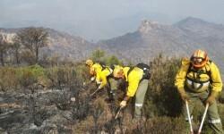 Les brigades d'Imelsa han fet un centenar de serveis d'emergència els mesos d'estiu