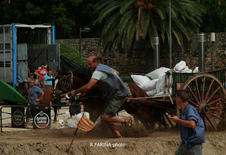 Primeras jornadas del XI Concurso de Tiro y Arrastre Ciudad de Valencia (11)