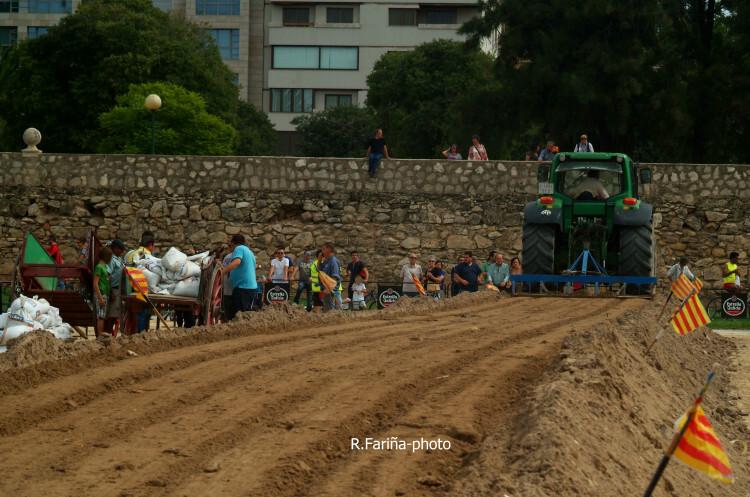 Primeras jornadas del XI Concurso de Tiro y Arrastre Ciudad de Valencia (7)