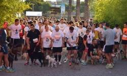 Salida de la Can-rrera BIOPARC-Valencia de la edición 2014.