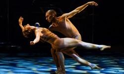 Se destinan más de 1,2 millones a 122 proyectos del sector del teatro, el circo y la danza.