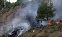 Un rayo provoca un incendio en el parque natural de la Serra de Mariola.