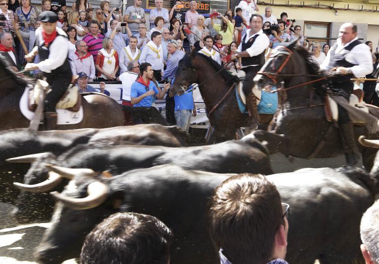 El President de la Generalitat, Ximo Puig, visita el Ayuntamiento de Segorbe, la Feria del Jamón y del Embutido, y asiste a la Entrada de toros y caballos. 09/09/2015. Foto: J.A.Calahorro/GVA.