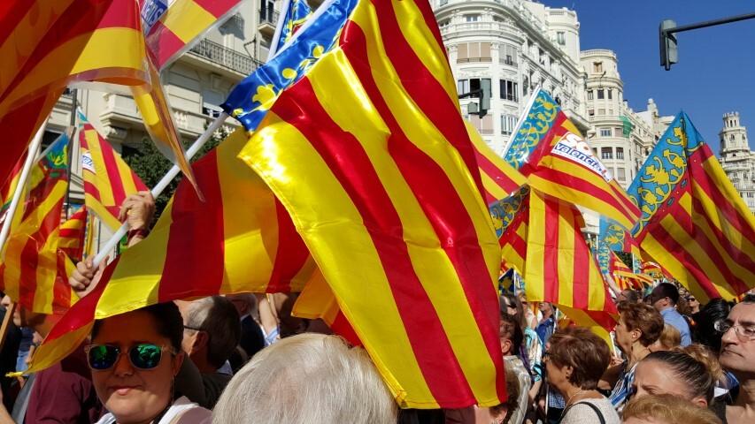 9 octubre procesion civica valencia senyera 20151009_125334 (115) (Small)