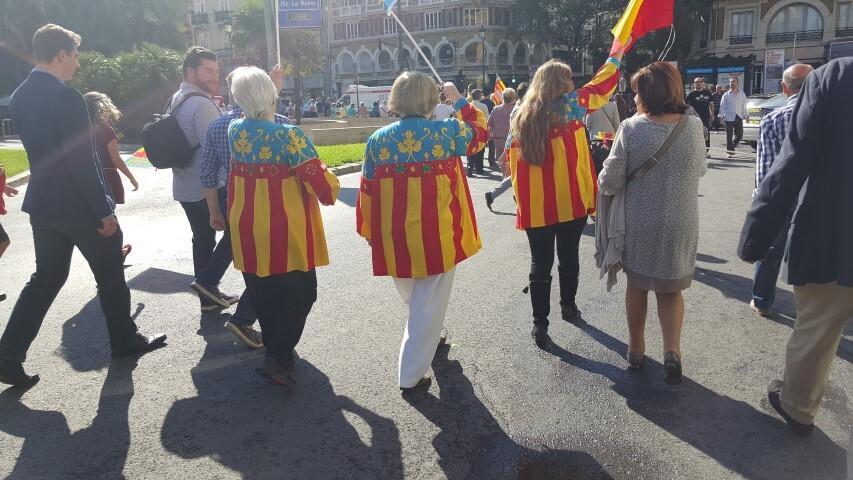 9 octubre procesion civica valencia senyera 20151009_125334 (51) (Small)