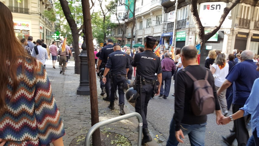 9 octubre procesion civica valencia senyera 20151009_125334 (80) (Small)