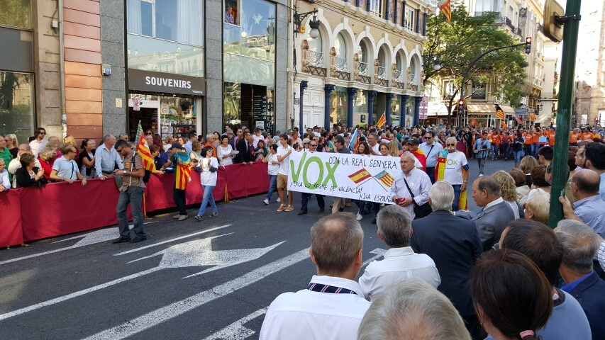 9 octubre procesion civica valencia senyera 20151009_125334 (9) (Small)