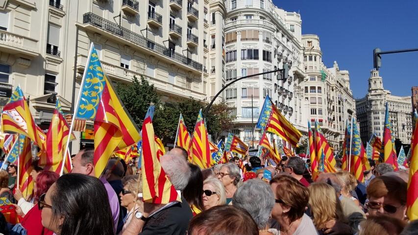 9 octubre procesion civica valencia senyera 20151009_125334 (96) (Small)