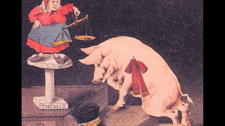 Cuando los animales eran arrestados y juzgados como personas (5)