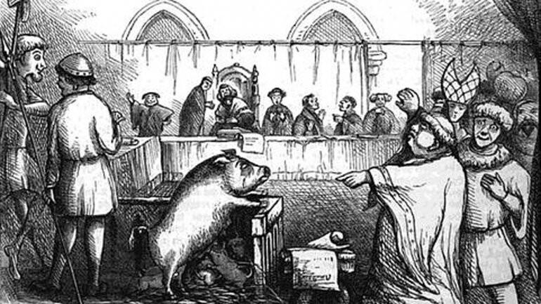 Cuando los animales eran arrestados y juzgados como personas (6)