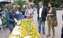 Fira de la Taronja. La regidora de Sostenivilidad Ambiental, Agricultura y Sanidad, Sara Uso, visita la primera jornada de la feria de la taronja. (slowphotos.es)