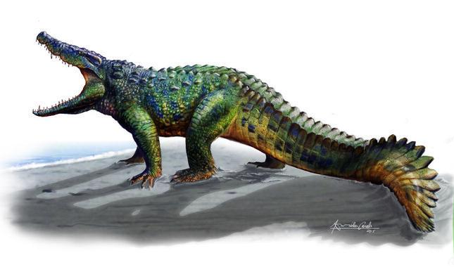 Hulki-un-cocodrilo-musculoso-entre-los-dinosaurios-de-los-Pirineos_image_380