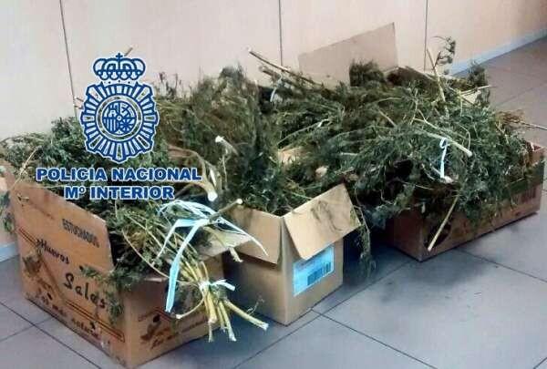La Policía Nacional detiene a una pareja cuando cargaba cajas con marihuana en una furgoneta.