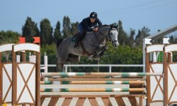 Oliva, Spain - 2015 March 24: during 5 years competition at CSI Mediterranean Equestrian Tour III at Oliva Nova Equestrian Center. (photo: © Nicole)