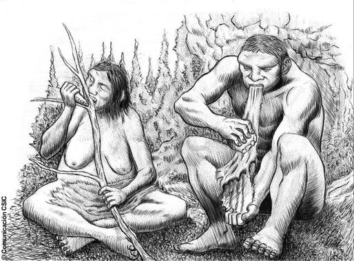 La-endogamia-predominaba-entre-los-neandertales-de-El-Sidron_image_380