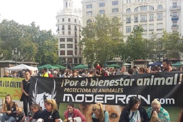 Manifestación contra el maltrato animal en centro de Valencia.