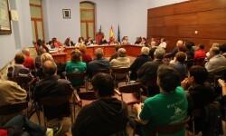 Pleno 29 de octubre Foto Luis Ibáñez